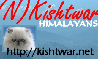 KISHTWAR Himalayans