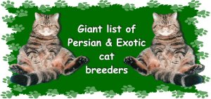 Persian Breeder's List